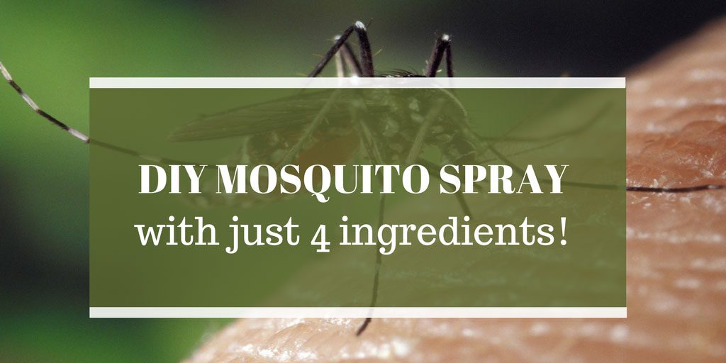 Homemade Mosquito Spray using Essential Oils